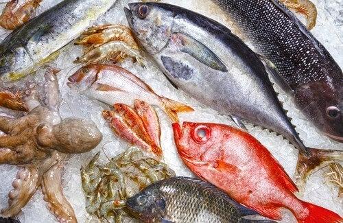 Fiskearter du bør unngå og hvilke du heller kan velge