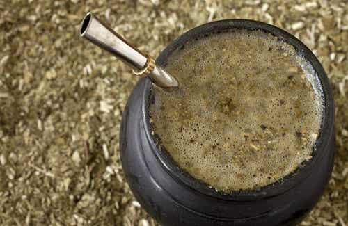 Hvordan rense kroppen med yerba mate