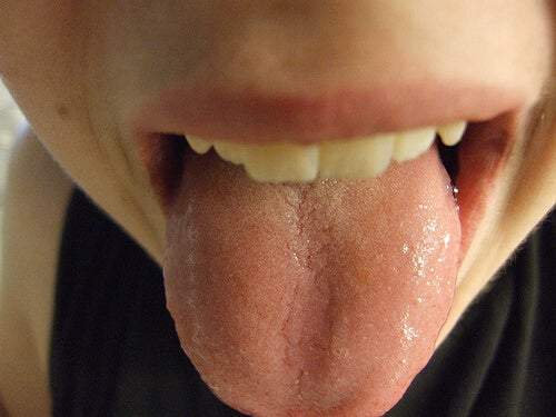 lengua2