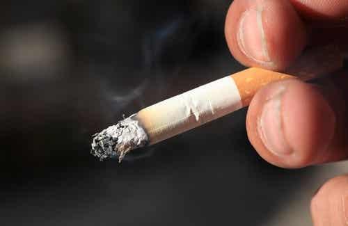 Planter som hjelper deg å stumpe røyken