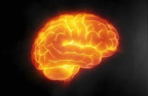 7 tips om hvordan du skal ta vare på hjernen din