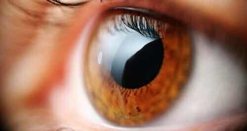 Øvelser som bekjemper øyeplager