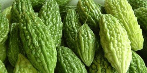 bittermelon-forside