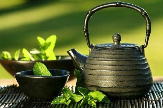 japansk-grønn-te