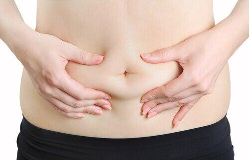 2-abdominal-fat