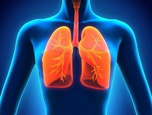 vann i lungene