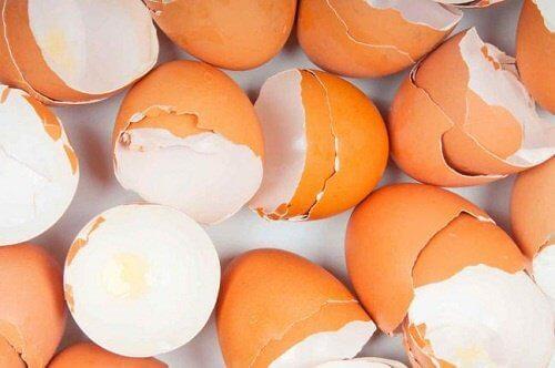 15+ overraskende bruksområder for eggeskall