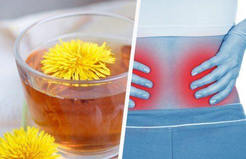 5 enkle måter å rense nyrene på