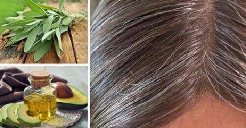 Grått hår: årsaker og naturlig behandling