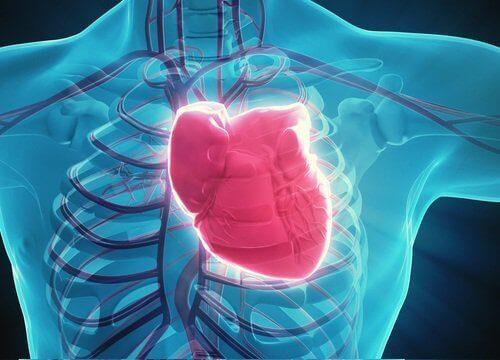 2-hjerte-helse
