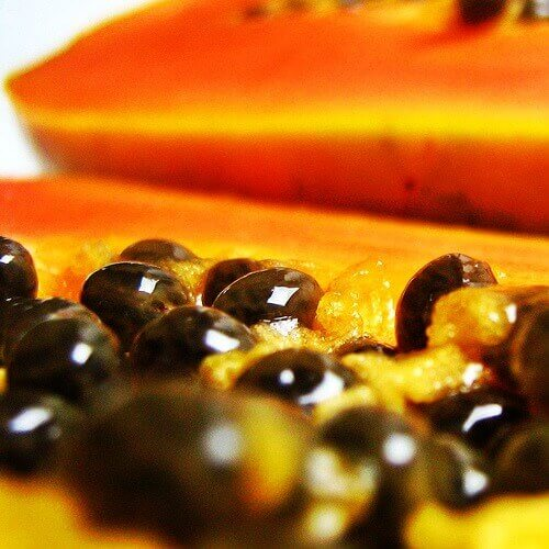 papayafrø