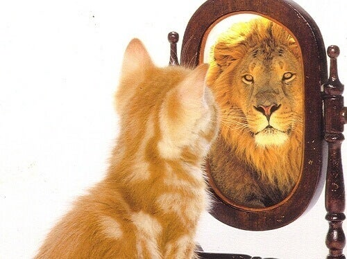 ha tro på deg selv