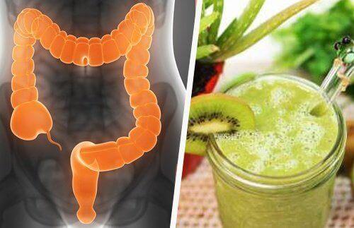 3 smoothier for å behandle irritabel tarmsyndrom