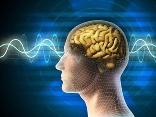 1-hjernebølger