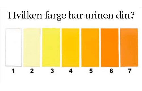 eggehvite i urinen diabetes tipo