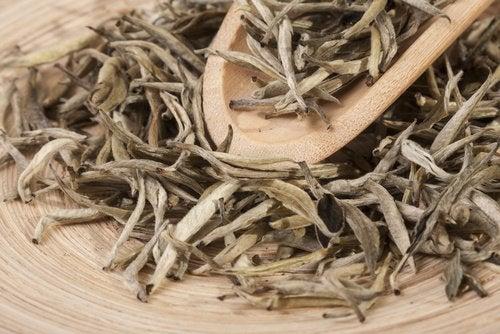 To naturlige tetyper rike på magnesium
