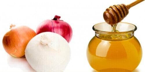 løk-og-honning