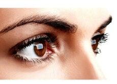 øyenbryn