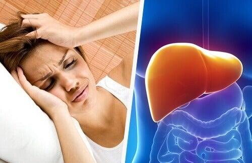 Forholdet mellom en hodepine og leveren