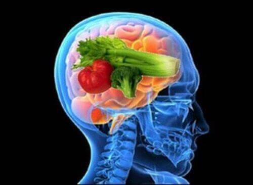Opplev fordelene med hjernedietten