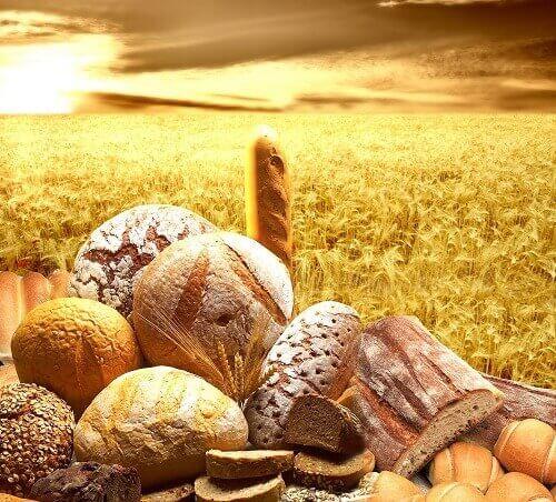 fullkorn-brød