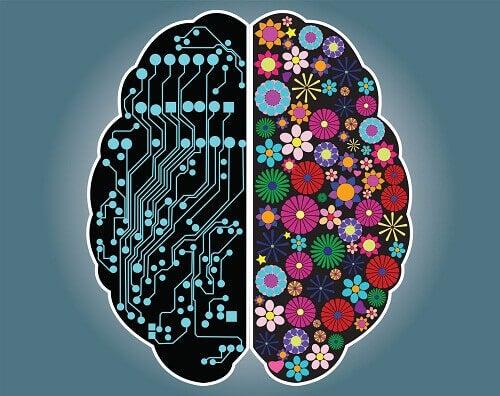 Er du en rasjonell eller intuitiv person?
