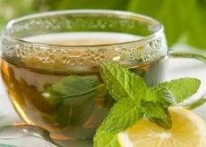 1-grønn-te