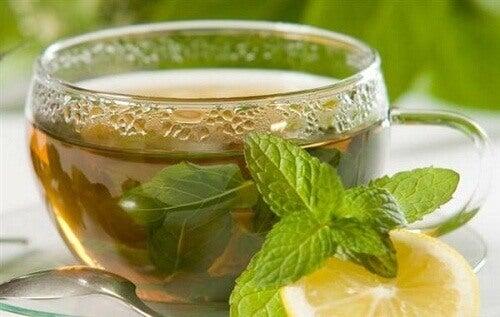 Te og uttrekk: en guide