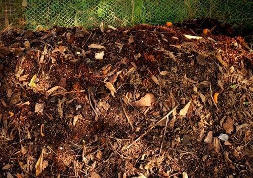3-plantejord-blanding