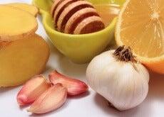 1-honning-hvitløk-sitrus