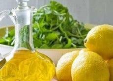 1-sitron-olivenolje