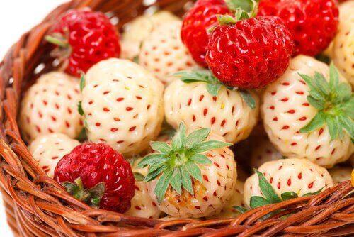 4-jordbær-blanding
