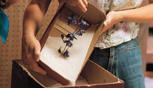 silikagel kan brukes til tørking av blomster