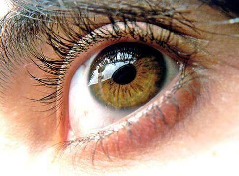 3-sunne-øyne