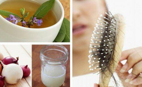 beste shampo mot håravfall