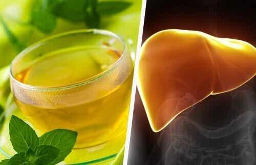 Fiber og bitre grønnsaker for en sunn lever