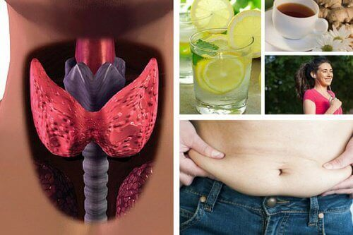 Hvordan gå ned i vekt når du lider av hypotyreose