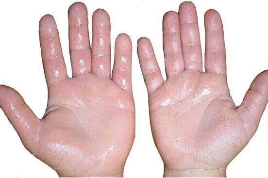 2-hender