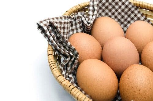 6-egg