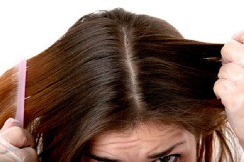 børste-hår