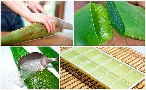 Slik oppbevarer du aloe vera-gelé på best mulig måte