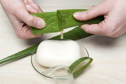 Hva kan aloe vera gjøre for deg?