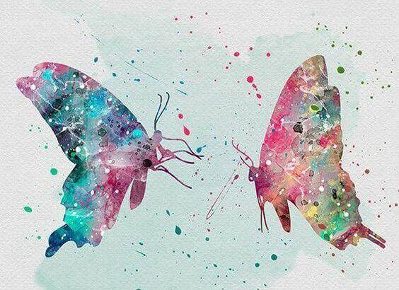 2-sommerfugler