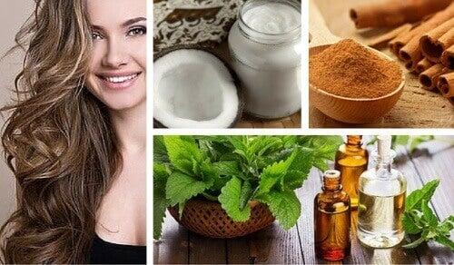 Behandling med kokos, mynte og kanel for å stimulere hårvekst