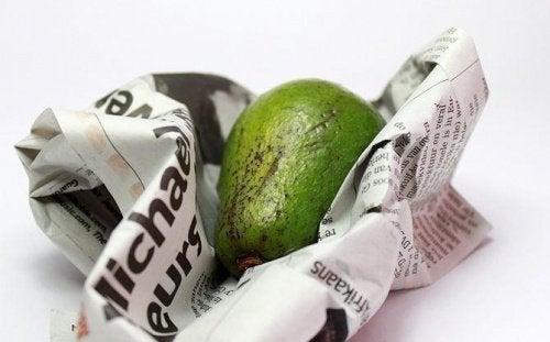 avokado i avispapir