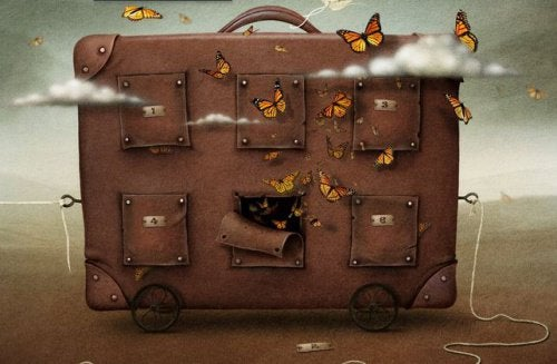 koffert-sommerfugler