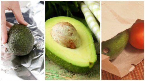 5 triks for å modne avokadoer på minutter