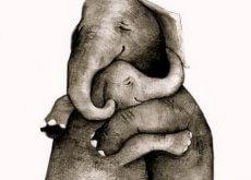 1-elefant-klem
