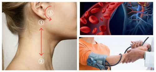 Reduser blodtrykket ditt naturlig på 5 minutter