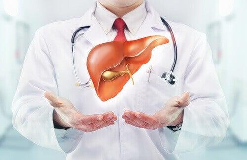 for-lever-og-galleblaere-balanse
